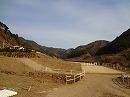 tsushima 馬事公苑①.jpg